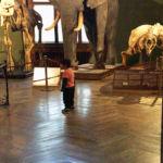 Ein Paradies für Kinder: Das Naturhistorische Museum in Wien.
